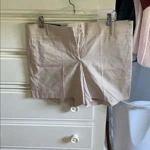 Ann Taylor Size 12 Devin Fit Metro Shorts NWT